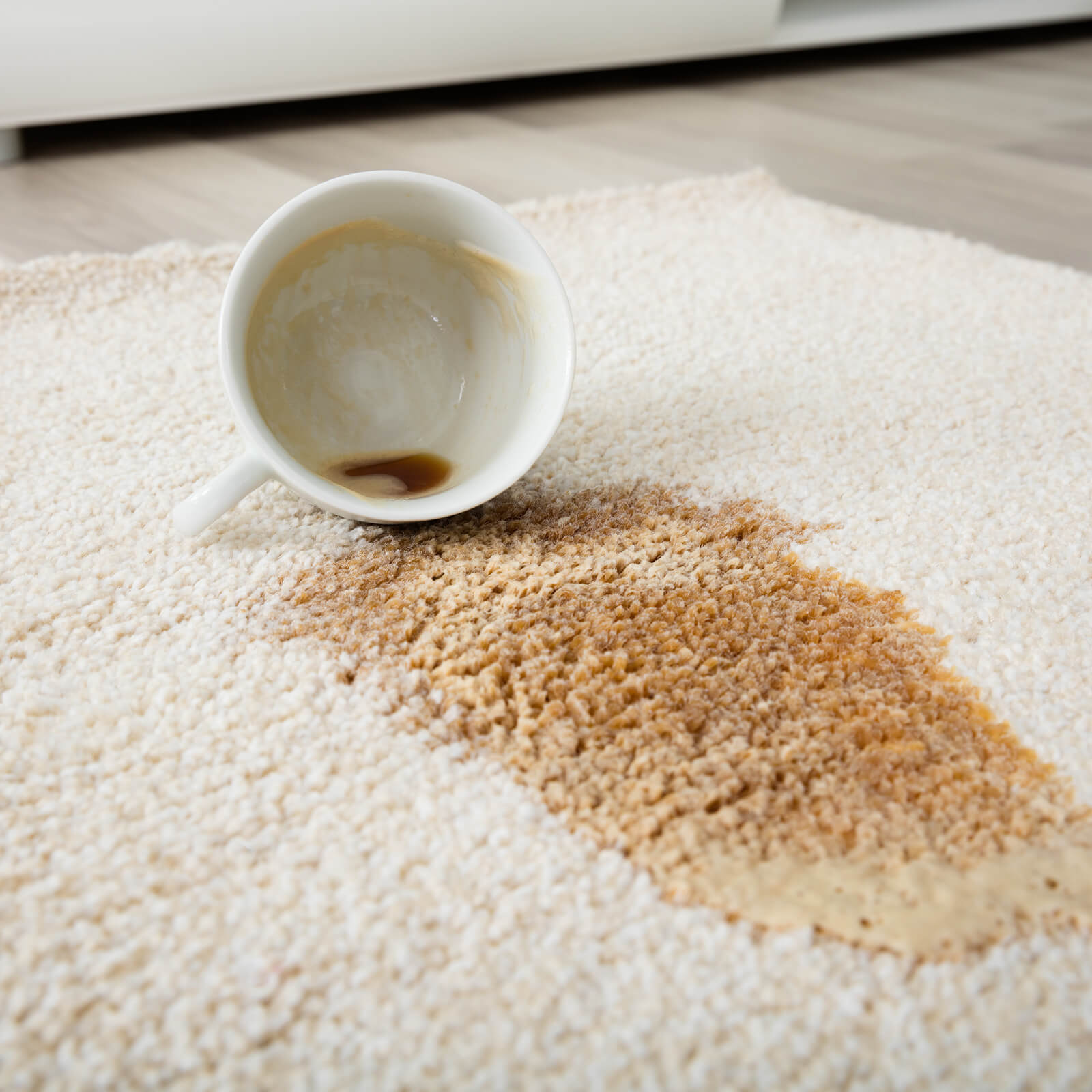 Carpet cleaning tips after spilled coffee | Bram Flooring